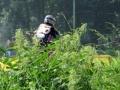 motorcross2007097